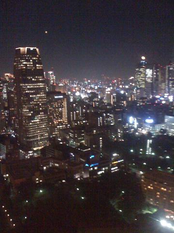 Tokyotower 016